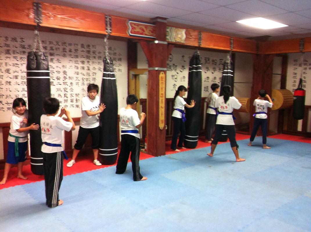 Wushu-Kungfu-Qigong-Taichi