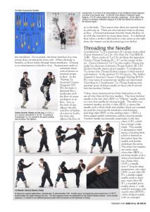 Master Tu Dim Mak article-2