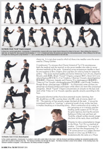 Master Tu Dim Mak article-3
