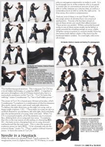 Master Tu Dim Mak article-4