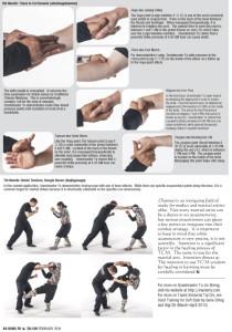 Master Tu Dim Mak article-5
